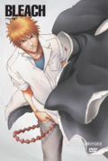 Bleach Vol. 16 Cover