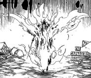 R508 Zanjitsu Gokui