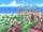 Eizou Town