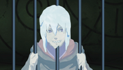 Seichi pstryking through bars