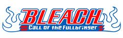 Bleach Call of the Fullbringer v2