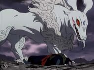 Kuniharu dog transformation