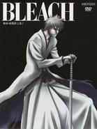 Bleach Vol. 34 Cover