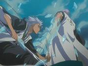 Gin Vs Toshiro