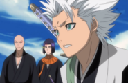 FTBHitsugaya asks why