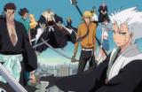 Vizard and Gotei13 protects Ichigo