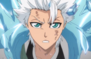 293Hitsugaya proclaims