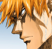512Ichigo's determination