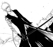 417Ichigo's new appearance
