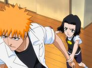Karin stopping Ichigo