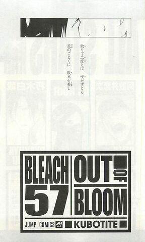 File:Bleach Volume 57 Poem Bleach Story RPG.jpg