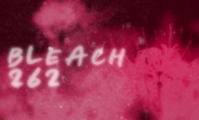 290px-Bleach 262 anime title