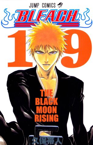 File:Bleach cover 19 Udarsha45 Bleach Story.jpg