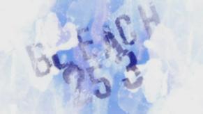 290px-Bleach 253 anime title