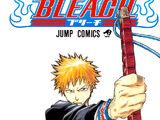 Bleach Volume Covers
