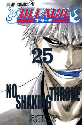 File:Bleach cover 25 Udarsha45 Bleach Story.jpg