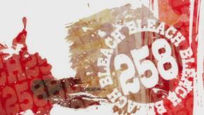 290px-Bleach 258 anime title