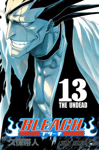 File:Bleach cover 13 Udarsha45 Bleach Story.jpg