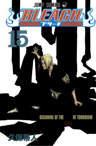 File:Bleach cover 15 Udarsha45 Bleach Story.jpg