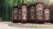Shunpo gates