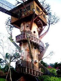 Tree house by endlesskalsada