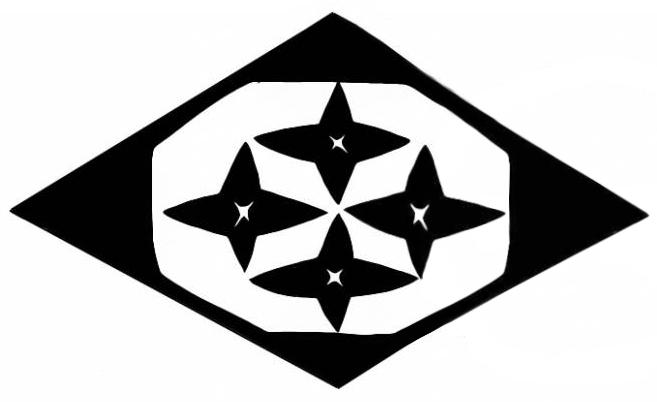 Honor Guard Bleach Untold Stories Wiki Fandom Powered By Wikia