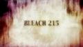 Bleach 215