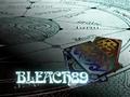 Bleach 89