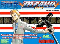 Mangakapitelcover1