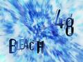 Bleach 48