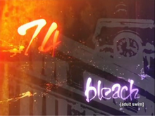 Bleach 74