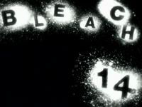 Bleach14