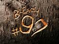 Bleach 97