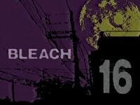 Bleach16