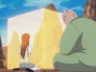 Orihime und Hachi