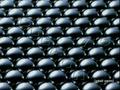 Bleach 75