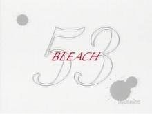 Bleach 53