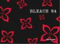 Bleach 84