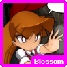 File:Blossom(PPGD)box.png