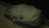 207 bag