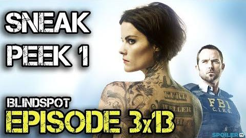 "Blindspot 3x13 Sneak Peek ""Warning Shot"""