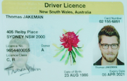 Fake driver licence tom