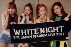 BLACKPINK at Taeyang's White Night Concert Japan Day 2 080817 2