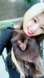 Jennie and Kuma at the park 4
