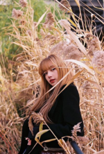 Lisa IG Update 181209 2