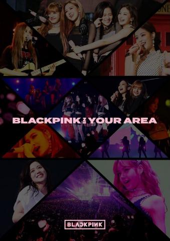 BLACKPINK In Your Area (album) | BLACK PINK Wiki | FANDOM
