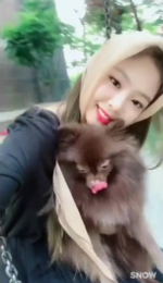 Jennie and Kuma at the park 6