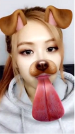 Rosé using the dog filter 2