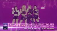 """LIVE DVD & Blu-ray """"BLACKPINK ARENA TOUR 2018 """"SPECIAL FINAL IN KYOCERA DOME OSAKA"""""""" TRAILER"""