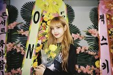Lisa IG Update 181114 2